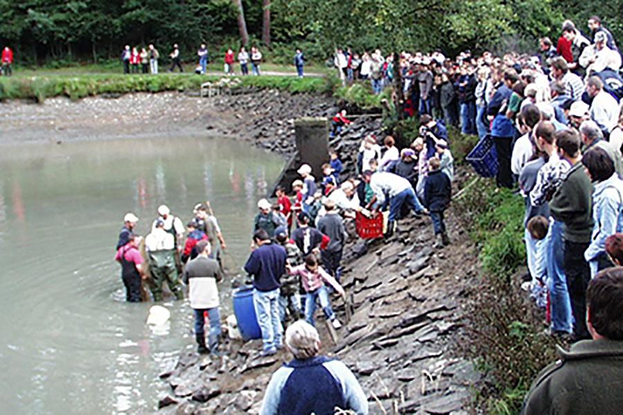 Reblaus Express & Abfischen im Anglerparadies Hessendorf